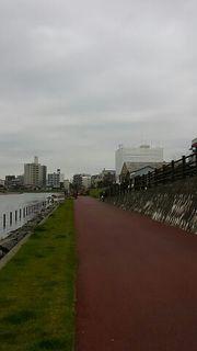 regatta1.jpg