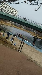 rowing181.JPG